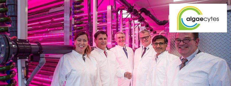 Algaecytes – Deepbridge Technology Growth EIS-min.jpg