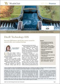 DeeR Technology EIS Research Report-border