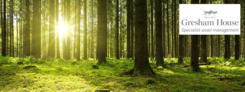 Gresham House Forestry Fund
